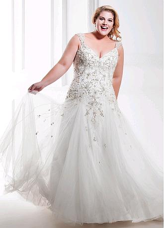 Brilliant Tulle & Organza V-neck Neckline Plus Size A-line Wedding Dresses With Beaded Embroidery